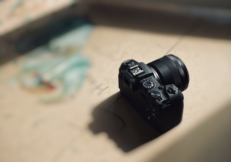 What is the Best Camera for Photographing Artwork?
