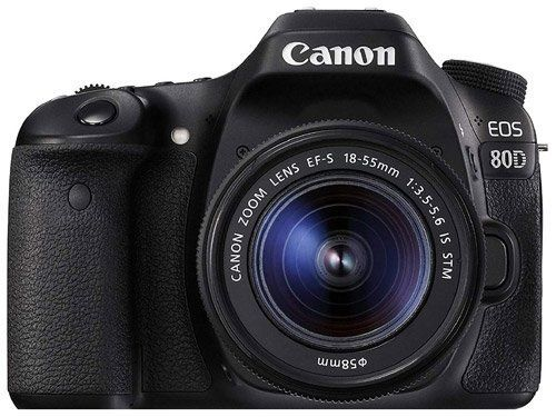Canon Digital SLR Camera Body [EOS 80D] - The best camera for photographing art