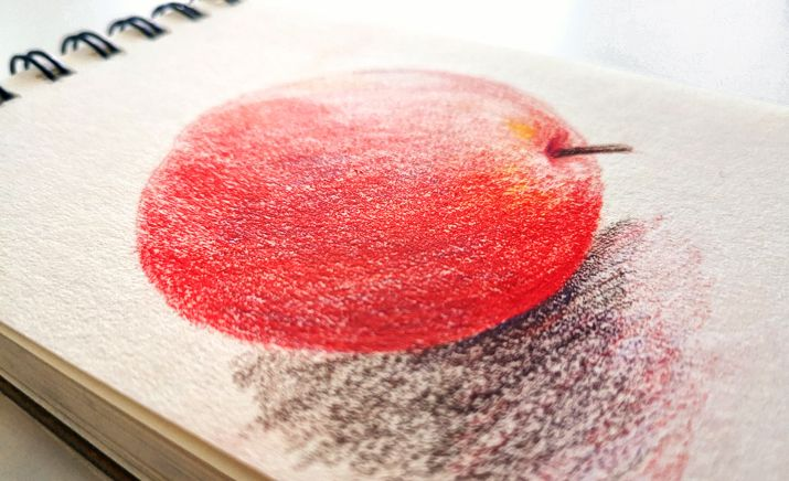 How to color with colored pencils drawing