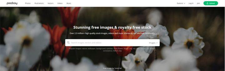 Pixabay, art reference photos