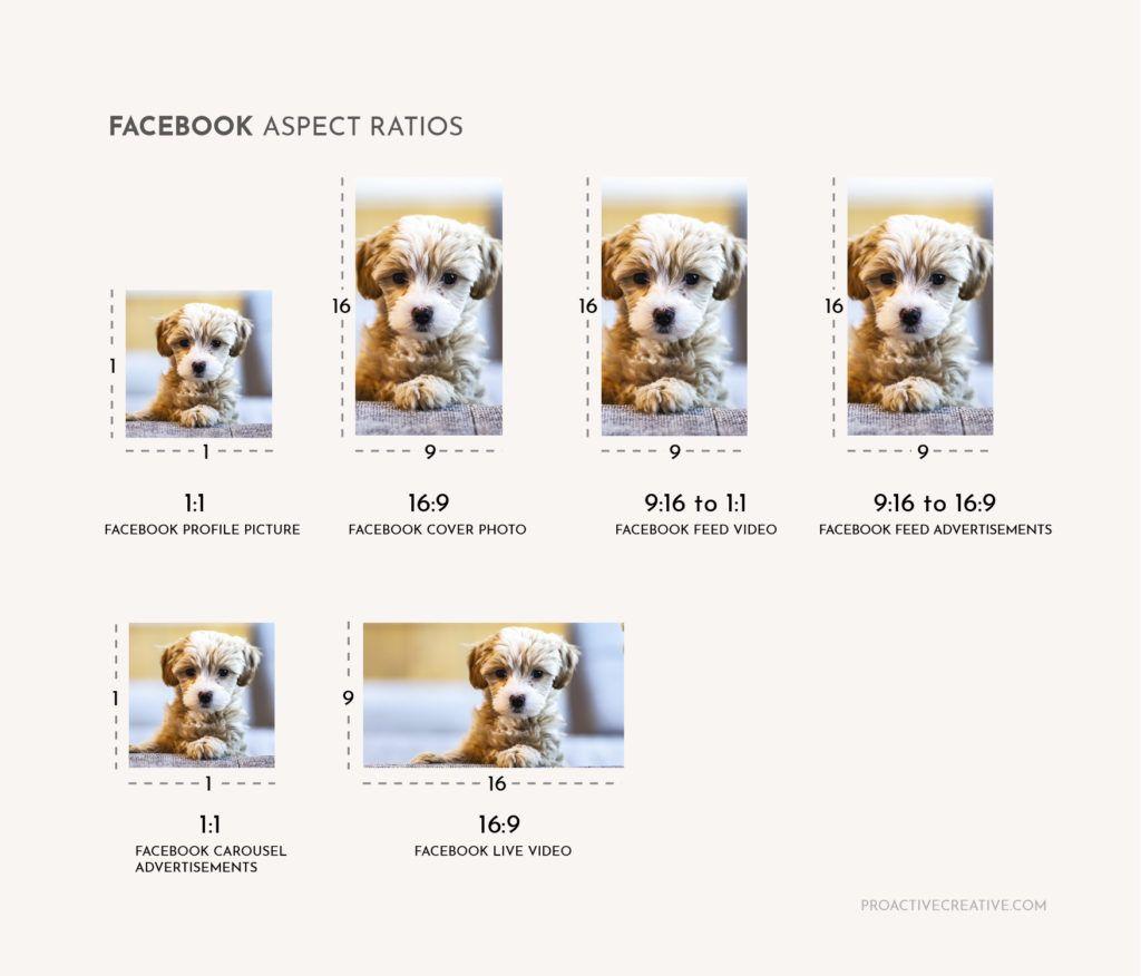Facebook aspect ratio