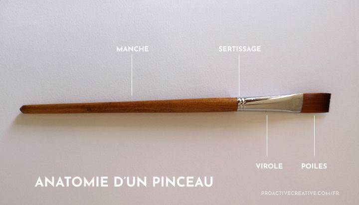 Les différents types de pinceaux. Anatomie d'un pinceau